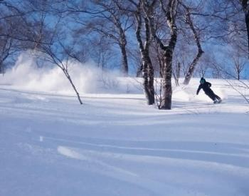 JaPOW - Jan 25-Feb 1, 2020